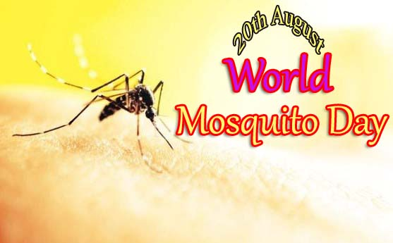 20th August 2019 - World Mosquito Day