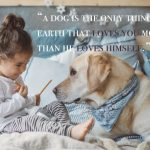 Best Inspirational National Dog Day Quotes 2019