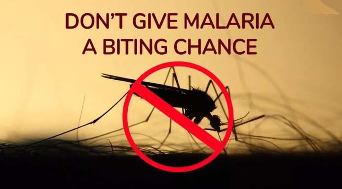 Best World Mosquito Day Slogans 2019