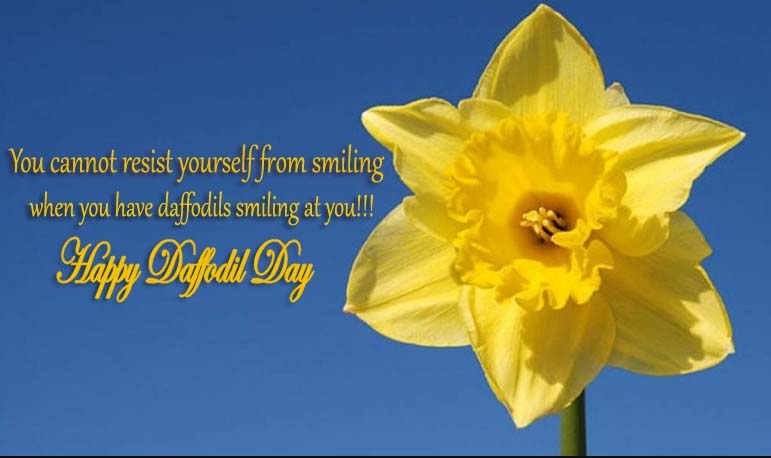 Daffodil Day Slogans, Wishes, Messages, Quotes, SMS, Greetings & Text SMS