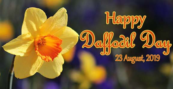 Happy Daffodil Day 2019