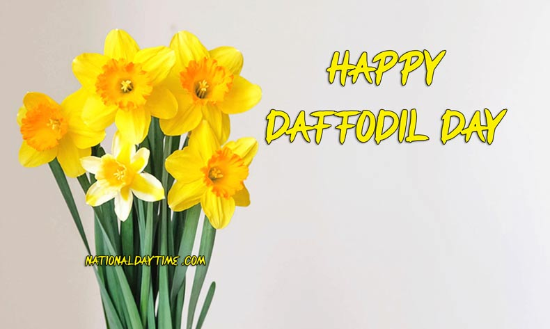 Happy Daffodil Day NZ & AUS