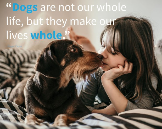 National Dog Day 2019 Wishes, Picture, Messages, Image, Quotes, Greetings, SMS & photos