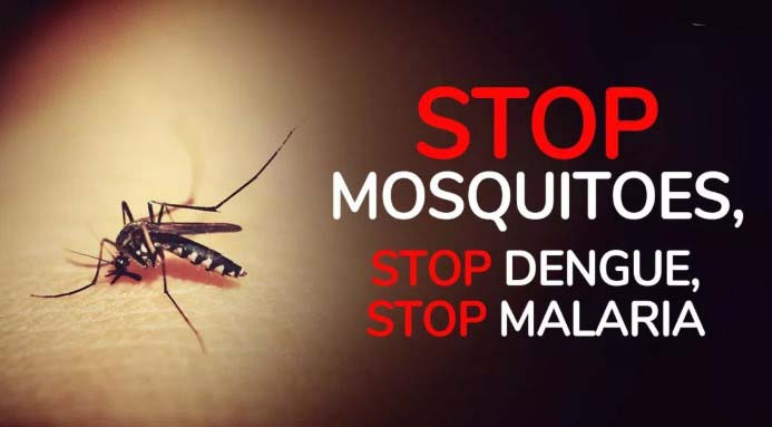 World Mosquito Day Slogans