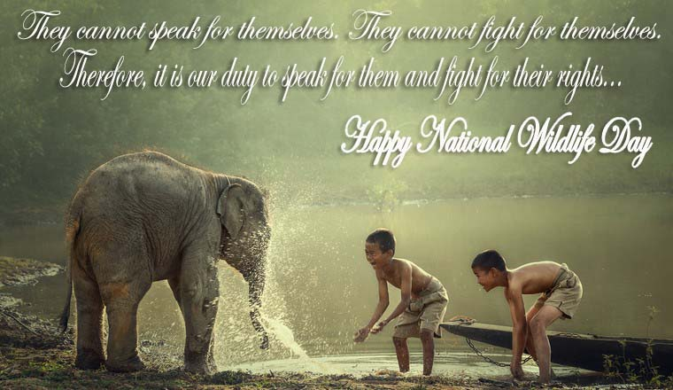 National Wildlife Day 2019 Wishes, Messages, Quotes, Greetings, SMS, Text, Saying & Status