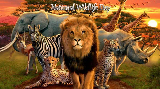 National Wildlife Day 2019