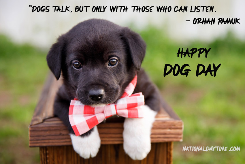 Dog Day Quotes