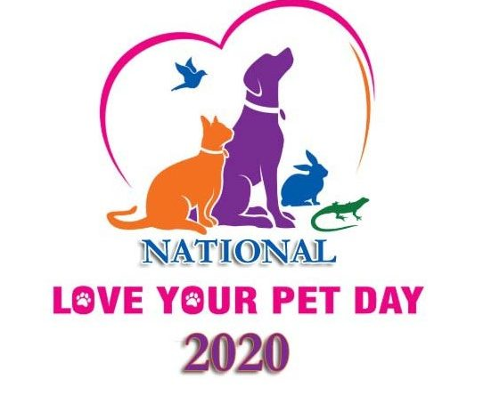 Love Your Pet Day Quotes - National Love Your Pet Day 2020 Wishes, Greetings, Messages & Sayings